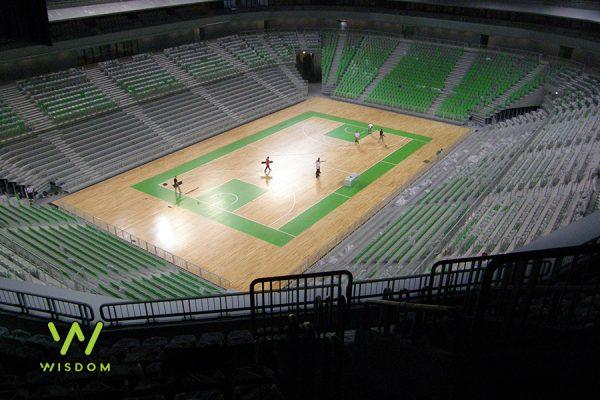 21-leseni-sportni-pod-Ljubljana-dvorana-Stozice-Q